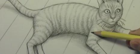 Mark Crilley漫画教程102:猫的画法